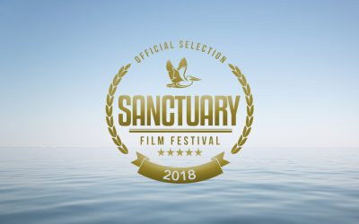 Submissions open for the 2018 Sanctuary Cove International Film Festival